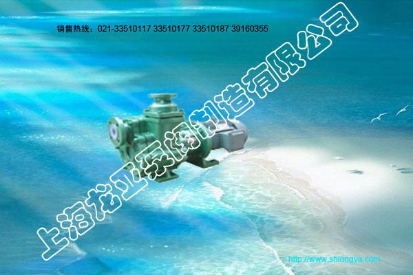 ZMDF海水泵,氟塑料海水泵,自吸海水泵,磁力海水泵
